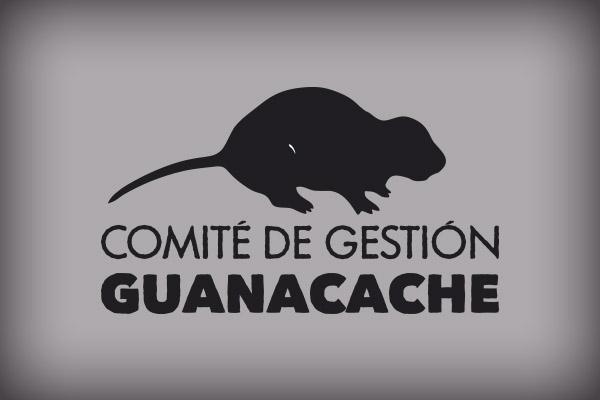 ComiteGuanacacheBranding2